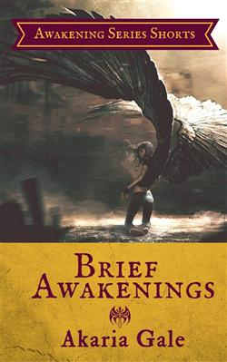 Brief Awakenings: Awakening Series Shorts