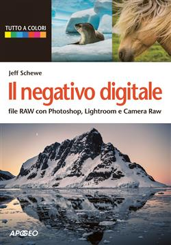 Il negativo digitale. File raw con Photoshop, lightroom e camera raw