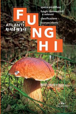Funghi. Specie più diffuse, funghi commestibili e velenosi, classificazione, riconoscimento